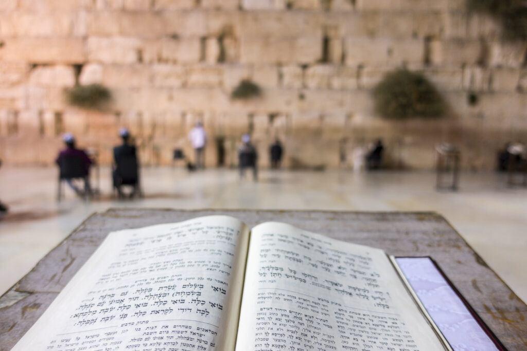 Open Torah